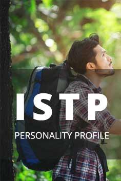 Personality Type: ISTP [Analyzer, Crafter, Artisan, Pragmatist]