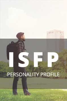 Personality Type: ISFP [Artist, Composer, Producer, Artisan, Supporter]