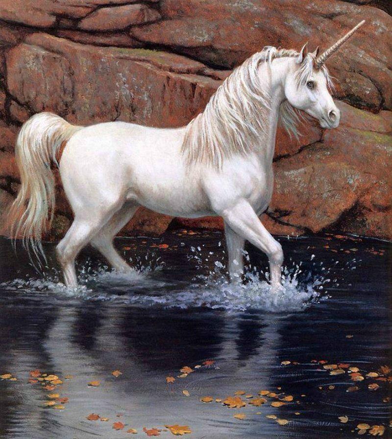 Celtic Unicorn Animal Zodiac Sign