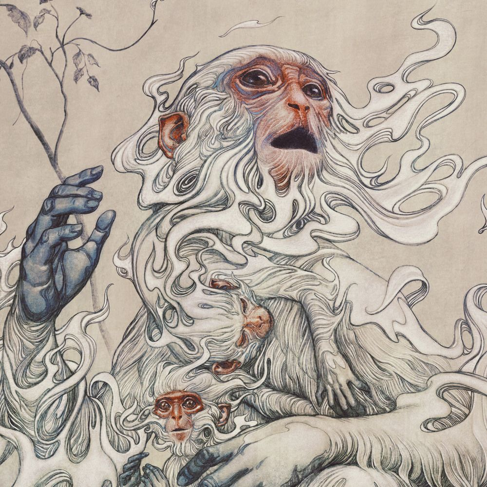Shio Monyet: Karakter, Percintaan, Karir, Keuangan, dan Kesehatan